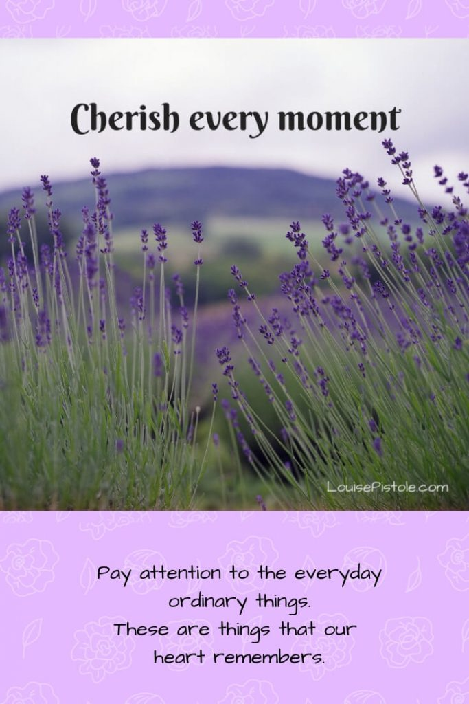 A field of lavender. Cherish every moment.