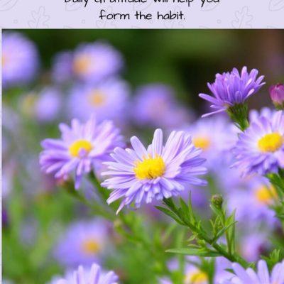 JOY will last when you make it a Habit!