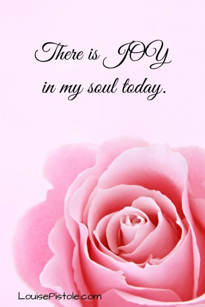 A pink rose. There is JOY in my soul today.