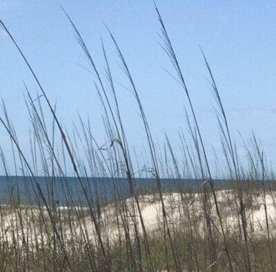The Peaceful Life at the coast