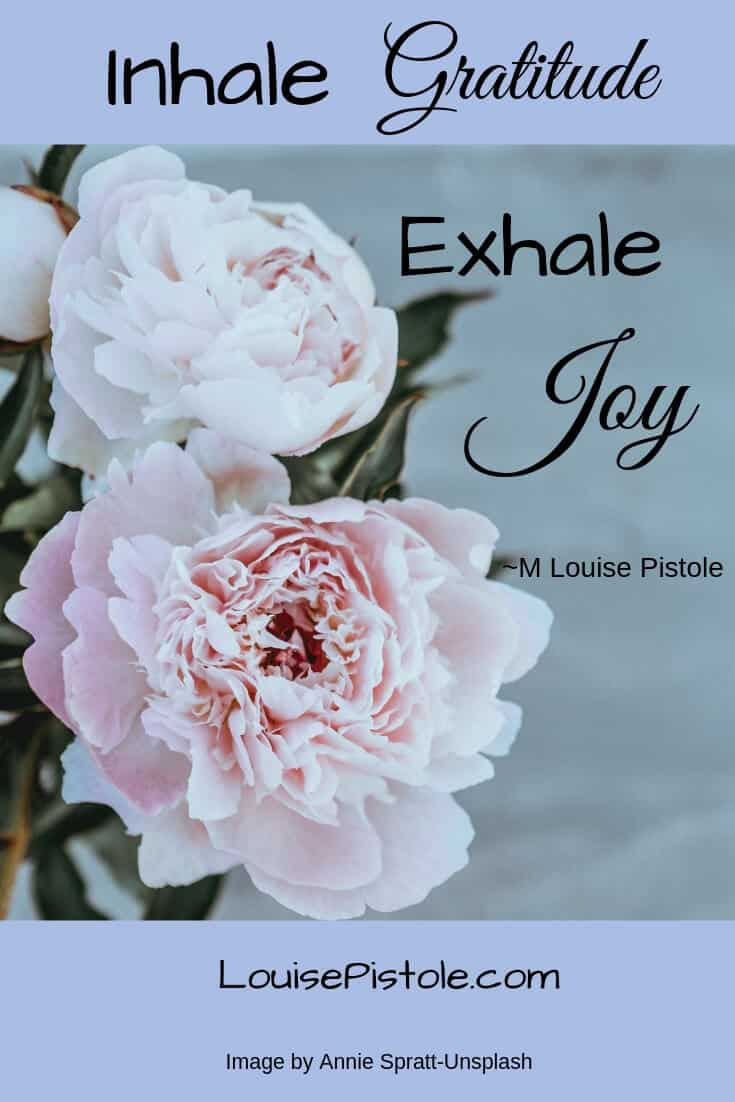 Inhale Gratitude - Exhale Joy