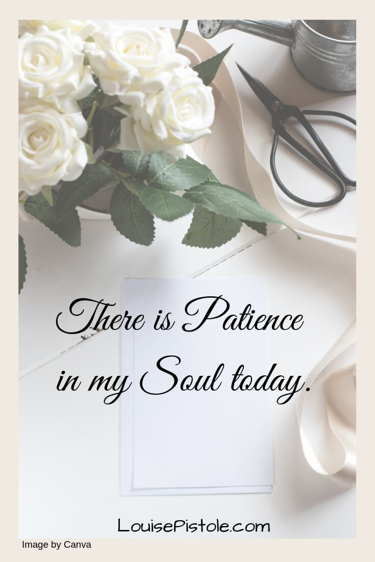 There is patience is my soul today.