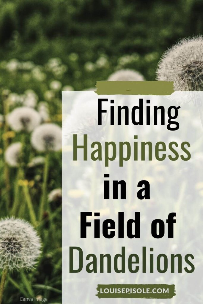 Finding happiness in a field of dandelions